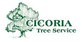 Logo_CicoriaTreeService