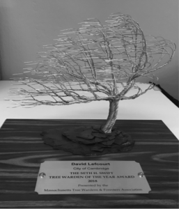 Tree Warden of the Year | Massachusetts Tree Wardens and