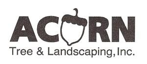 Logo_Acorn Tree