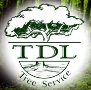 Logo_TDLTreeService