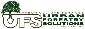 Logo_UFS_small