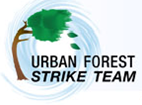 USFS Strike Team